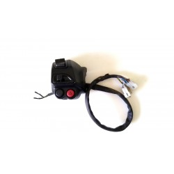 ELETTROVENTOLA RADIATORE APRILIA SCARABEO LIGHT IE 250 2008